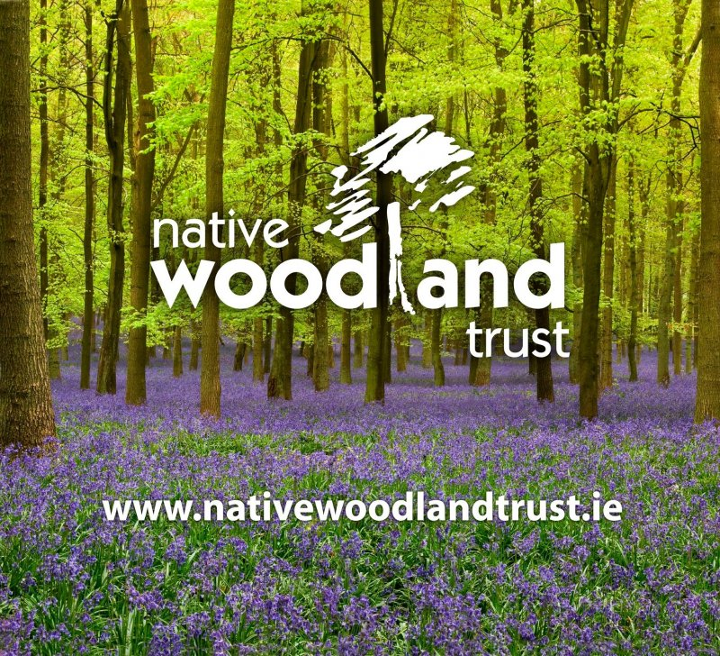 Donation to Native Woodland Trust